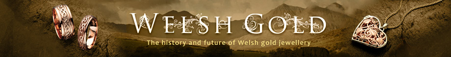Welsh Gold logo